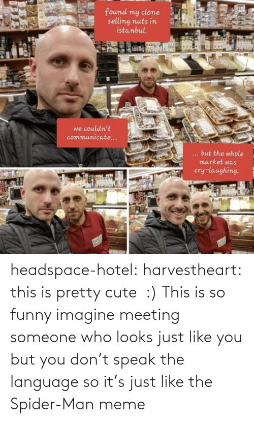 Cute, Funny, and Meme: headspace-hotel:  harvestheart: this is pretty cute :)   This is so funny imagine meeting someone who looks just like you but you don't speak the language so it's just like the Spider-Man meme