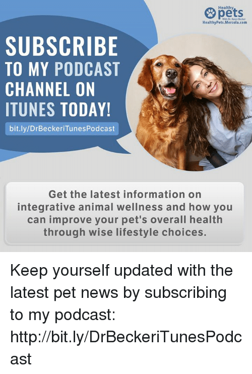 Memes, News, and iTunes: Healthy  HealthyPets.Mercola.com  SUBSCRIBE  TO MY PODCAST  CHANNEL ON  ITUNES TODAY!  bit.ly/DrBeckeriTunesPodcast  Get the latest information on  integrative animal wellness and how you  can improve your pet's overall health  through wise lifestyle choices. Keep yourself updated with the latest pet news by subscribing to my podcast: http://bit.ly/DrBeckeriTunesPodcast