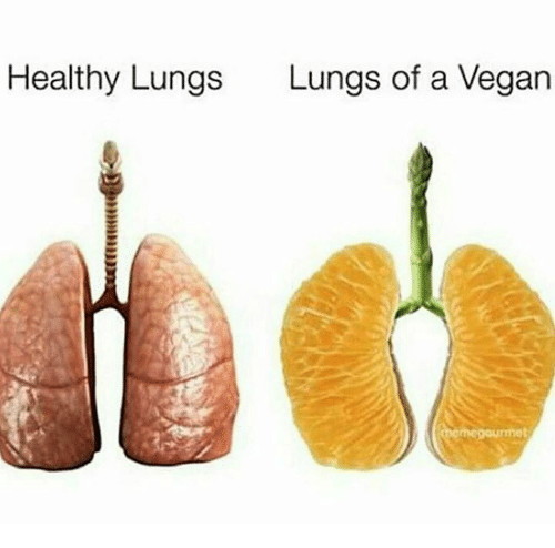 Memes, Vegan, and 🤖: Healthy Lungs  Lungs of a Vegan