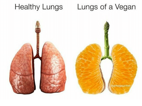 Vegan, Vegans, and A Vegan: Healthy Lungs  Lungs of a Vegan  emegourmet