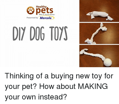 Memes, 🤖, and Make Your Own: Healthy  & With Dr. Karen Becker  Presented by  Mercola  DIY DOG TOYS Thinking of a buying new toy for your pet? How about MAKING your own instead?
