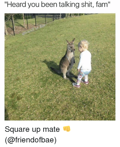 """Bae, Fam, and Memes: """"Heard you been talking shit, fam""""  f Bae Square up mate 👊 (@friendofbae)"""
