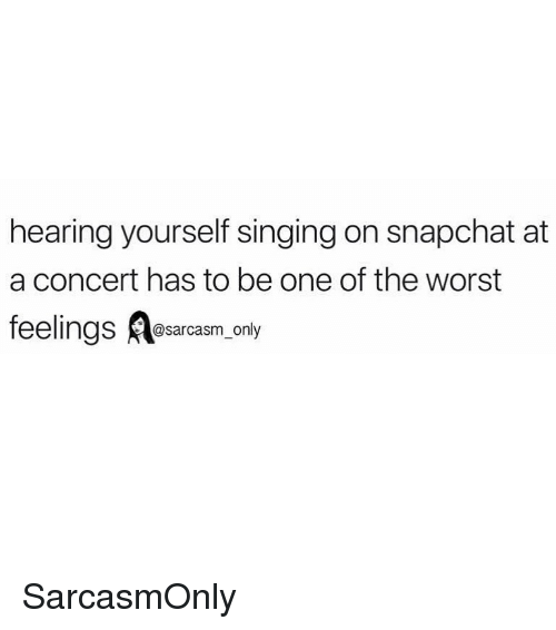 Funny, Memes, and Singing: hearing yourself singing on snapchat at  a concert has to be one of the worst  feelings Aesarcasm.only SarcasmOnly