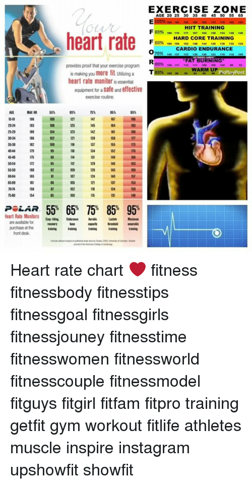 Heart Rate Provides Proof That Your Exercise Program Is Making You