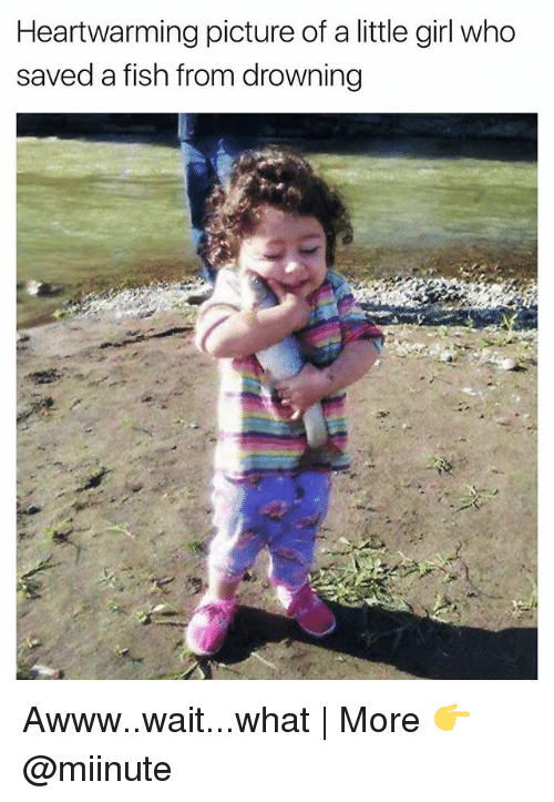 Funny, Fish, and Girl: Heartwarming picture of a little girl who  saved a fish from drowning Awww..wait...what   More 👉 @miinute
