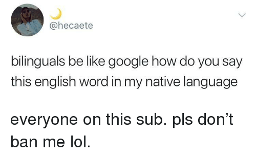 Be Like, Google, and Lol: @hecaete  bilinguals be like google how do you say  this english word in my native language everyone on this sub. pls don't ban me lol.