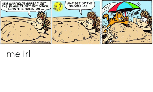Heh Garfield Spread Out The Blanket Set Out Lunch Turn The Radio On And Set Up The Umbrella Me Irl Radio Meme On Me Me