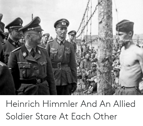 Himmler, Soldier, and Each Other: Heinrich Himmler And An Allied Soldier Stare At Each Other