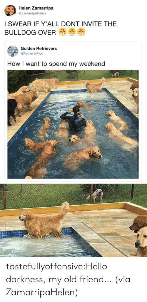 Hello, Target, and Tumblr: Helen Zamarripa  @ZamarripaHelen  I SWEAR IF Y'ALL DONT INVITE THE  BULLDOG OVER  EGolden Retriever:s  @RetrieverPics  How I want to spend my weekend tastefullyoffensive:Hello darkness, my old friend… (via ZamarripaHelen)