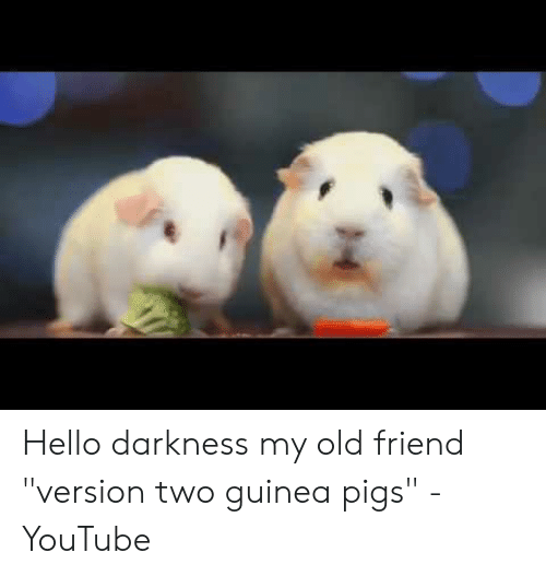 Hello Darkness My Old Friend Version Two Guinea Pigs