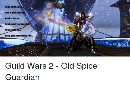 Hello GW2 Gamers Look at Your Guardian Now Back to Me Now Back at