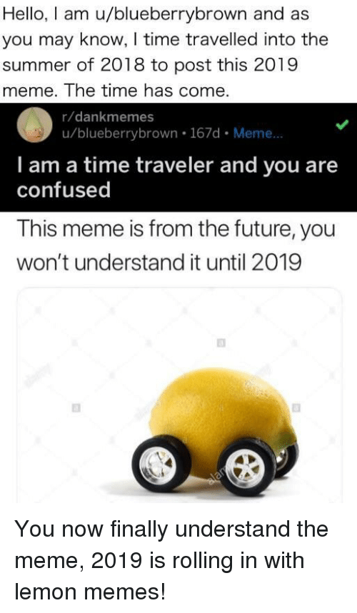 Confused, Future, and Hello: Hello, I am u/blueberrybrown and as  you may know, I time travelled into the  summer of 2018 to post this 2019  meme. The time has come  r/dankmemes  u/blueberrybrown. 167d. Meme...  I am a time traveler and you are  confused  This meme is from the future, you  won't understand it until 2019 You now finally understand the meme, 2019 is rolling in with lemon memes!