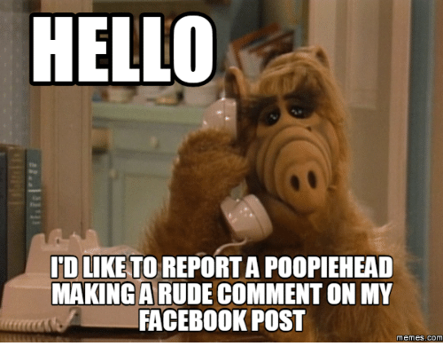 hello idlik to report a poopiehead making a comment on 17922286 hello idlik to report a poopiehead making a comment on my facebook