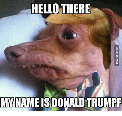 hello there my nameis donald trumpf 17858436 ✅ 25 best memes about i for one welcome our new meme i for one,I For One Welcome Meme