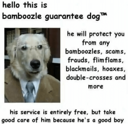 Hello, Free, and Good: hello this is  bamboozle guarantee dog  he will protect you  from any  bamboozles, scams  frauds, flimflam s.  blackmails, hoaxes  double-crosses and  more  his service is entirely free, but takie  good care of him because he's a good boy