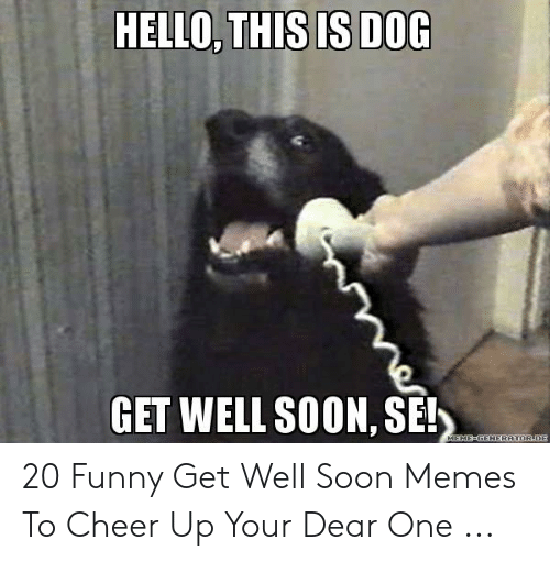 HELLO THISIS DOG GET WELL SOON SE! 20 Funny Get Well Soon Memes to