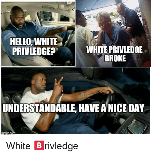 Hello, White, and Dank Memes: HELLO,WHITE  PRIVLEDGEP  WHITE PRIVLEDGE  BROKE  UNDERSTANDABLE, HAVE A NICE DAY