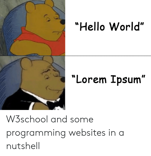 """Hello, World, and Programming: """"Hello World""""  """"Lorem Ipsum"""" W3school and some programming websites in a nutshell"""