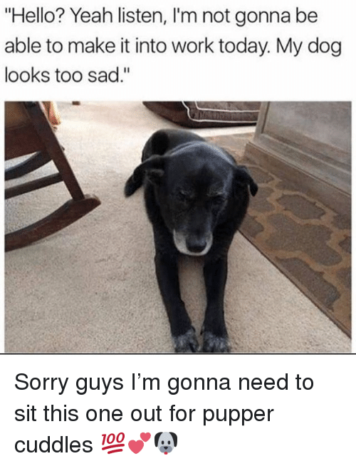 "Hello, Memes, and Sorry: ""Hello? Yeah listen, I'm not gonna be  able to make it into work today. My dog  looks too sad."" Sorry guys I'm gonna need to sit this one out for pupper cuddles 💯💕🐶"