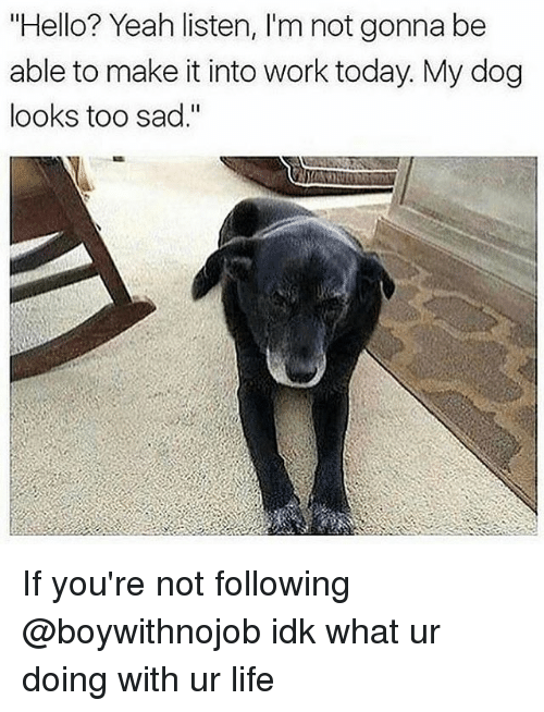 """Hello, Life, and Yeah: """"Hello? Yeah listen, l'm not gonna be  able to make it into work today My dog  looks too sad."""" If you're not following @boywithnojob idk what ur doing with ur life"""