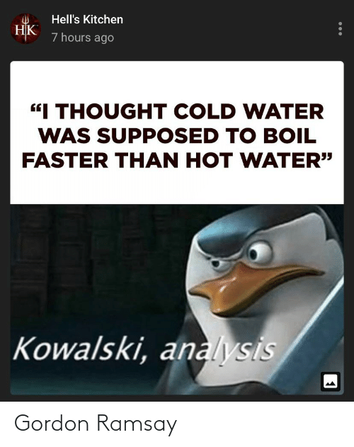 """Gordon Ramsay, Water, and Dank Memes: Hell's Kitchen  НК  7 hours ago  """"I THOUGHT COLD WATER  WAS SUPPOSED TO BOIL  FASTER THAN HOT WATER""""  Kowalski, analysis  ... Gordon Ramsay"""