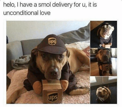 Love, Ups, and For: helo, I have a smol delivery for u, it is  unconditional love  upS  upS