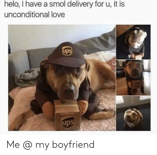 Love, Ups, and Boyfriend: helo, I have a smol delivery for u, it is  unconditional love  ups  ups Me @ my boyfriend