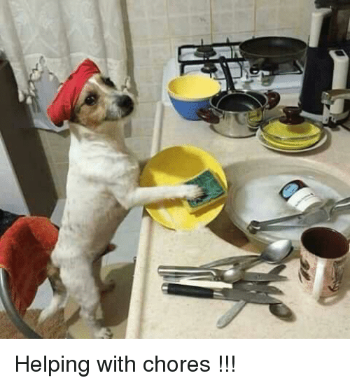 Helping, Chores, and With