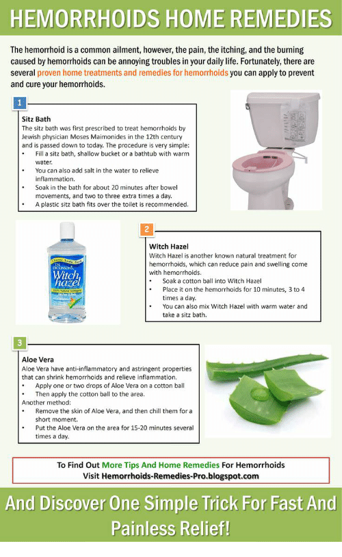 Home Remedies For Bug Spray For Dogs