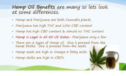 Hemp Oil Benefits Are Many So Lets Look at Some Differences