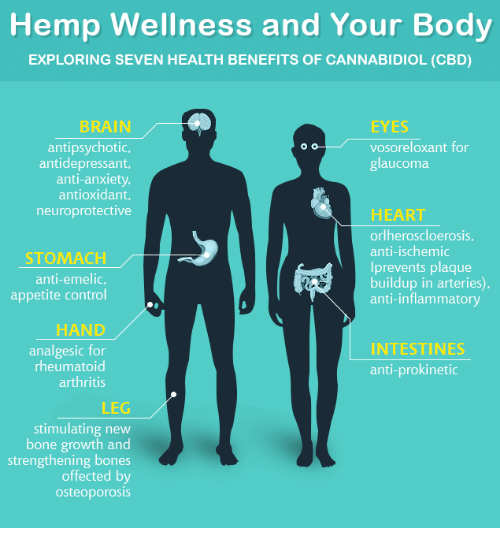 Hemp Wellness and Your Body EXPLORING SEVEN HEALTH BENEFITS OF
