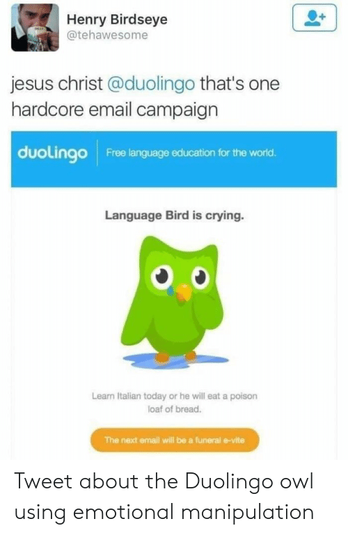 Crying, Jesus, and Email: Henry Birdseye  @tehawesome  jesus christ @duolingo that's one  hardcore email campaign  duolingo  Free language education for the world.  Language Bird is crying.  Learn Italian today or he will eat a poison  loaf of bread.  The next email will be a funeral e-vite Tweet about the Duolingo owl using emotional manipulation