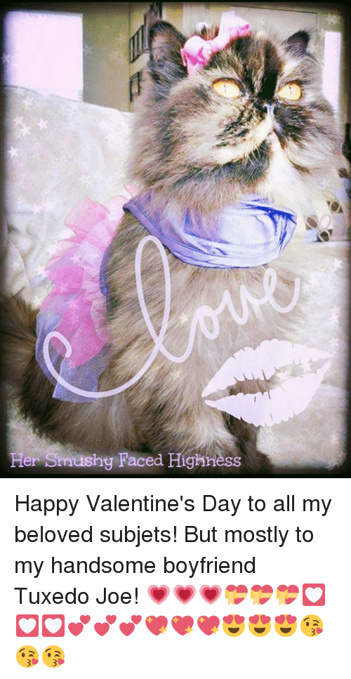 her hig faced highness happy valentine s day to all my beloved