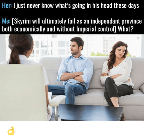 Fail, Head, and Memes: Her: I just never know what's going in his head these days  Me  [Skyrim will ultimately fail as an independant province  both economically and without lmperial controll What? 👌