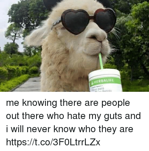 Funny, Herbalife, and Never: HERBALIFE. me knowing there are people out there who hate my guts and i will never know who they are https://t.co/3F0LtrrLZx