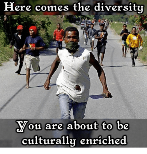 here-comes-the-diversity-ou-are-about-to-be-culturally-33336509.png