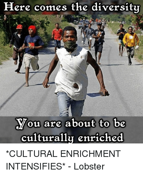 here-comes-the-diversity-you-are-about-t