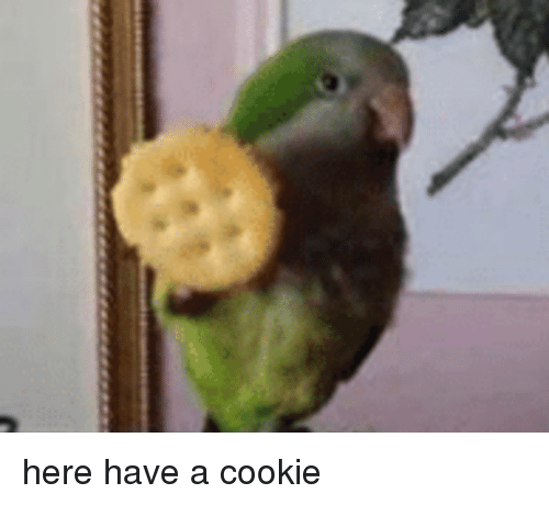 here-have-a-cookie-30238459.png