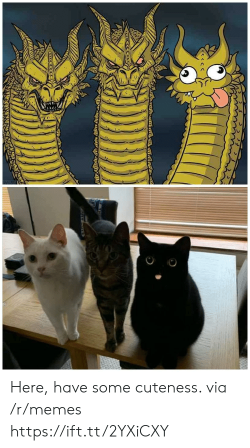 Memes, Via, and Href: Here, have some cuteness. via /r/memes https://ift.tt/2YXiCXY