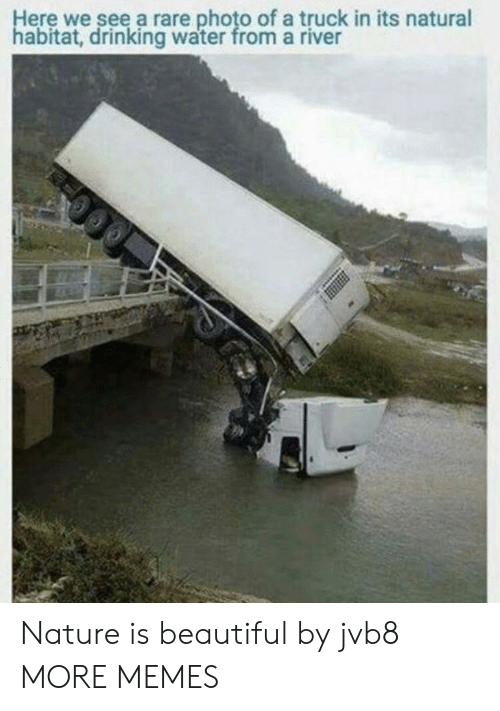 Beautiful, Dank, and Drinking: Here we see a rare photo of a truck in its natural  habitat, drinking water from a river Nature is beautiful by jvb8 MORE MEMES