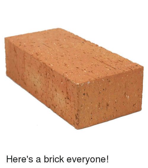 Dank Memes, Brick, and Everyone