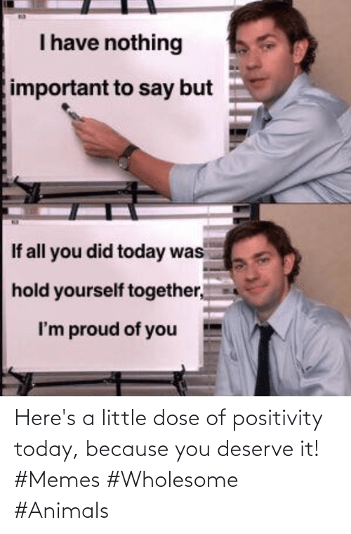 Animals, Memes, and Today: Here's a little dose of positivity today, because you deserve it! #Memes #Wholesome #Animals