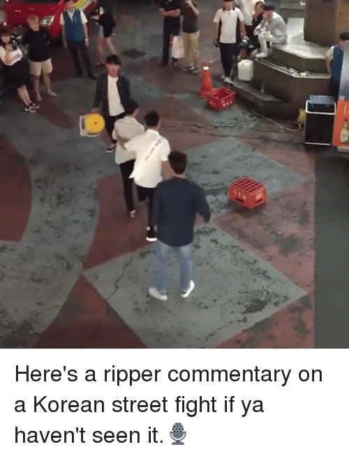 Memes, Korean, and Street Fight: Here's a ripper commentary on a Korean street fight if ya haven't seen it.🎙