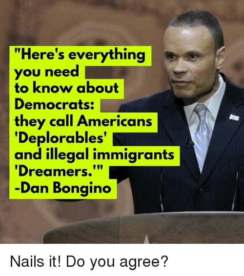 "Memes, Nails, and 🤖: ""Here's everything  you need 