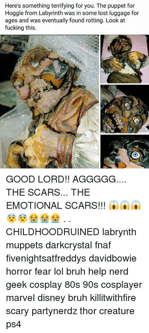 80s, Bruh, and Disney: Here's something terrifying for you. The puppet for  Hoggle from Labyrinth was in some lost luggage for  ages and was eventually found rotting. Look at  fucking this GOOD LORD!! AGGGGG.... THE SCARS... THE EMOTIONAL SCARS!!! 😱😱😱😨😨😭😭😭 . . CHILDHOODRUINED labrynth muppets darkcrystal fnaf fivenightsatfreddys davidbowie horror fear lol bruh help nerd geek cosplay 80s 90s cosplayer marvel disney bruh killitwithfire scary partynerdz thor creature ps4