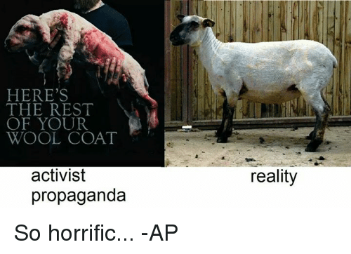 f6e18a28c95 Memes, Propaganda, and Reality: HERE'S THE REST OF YOUR WOOL COAT activist  propaganda