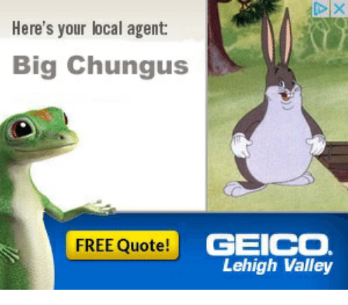 geico candidate profile