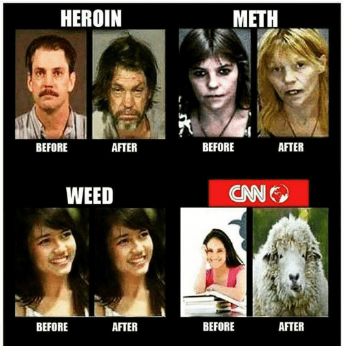 Heroin, Memes, and Weed: HEROIN  BEFORE  AFTER  WEED  BEFORE  AFTER  METH  BEFORE  AFTER  (CNN  AFTER  BEFORE
