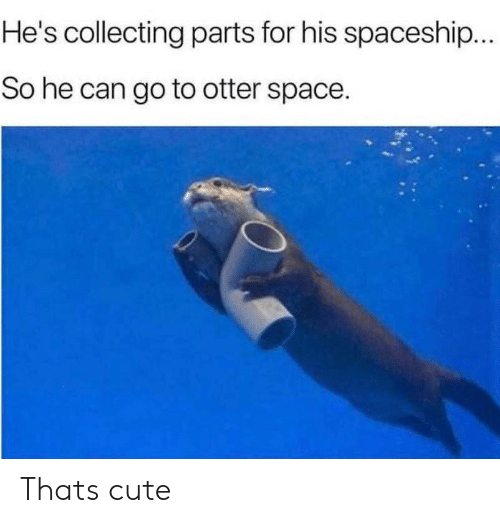 Cute, Space, and Can: He's collecting parts for his spaceship...  So he can go to otter space. Thats cute
