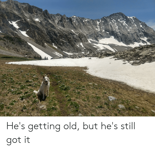 Old, Got, and Still: He's getting old, but he's still got it